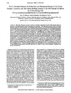 The C-terminal domain of Escherichia coli ... - ACS Publications